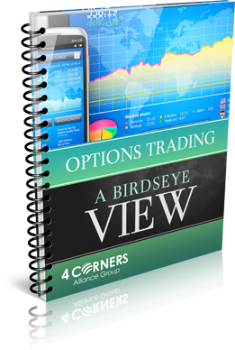 Options Trading – A Birds Eye View